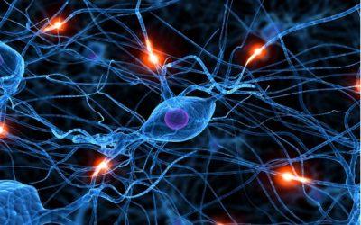 Proteina legata a Alzheimer aumenta dopo notte insonne