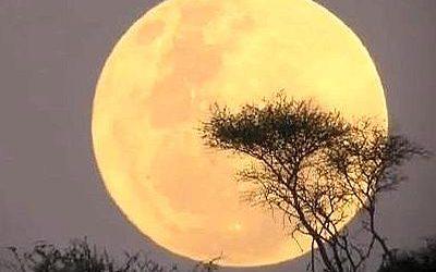 Domani con la superluna sonno difficile per 700mila italiani